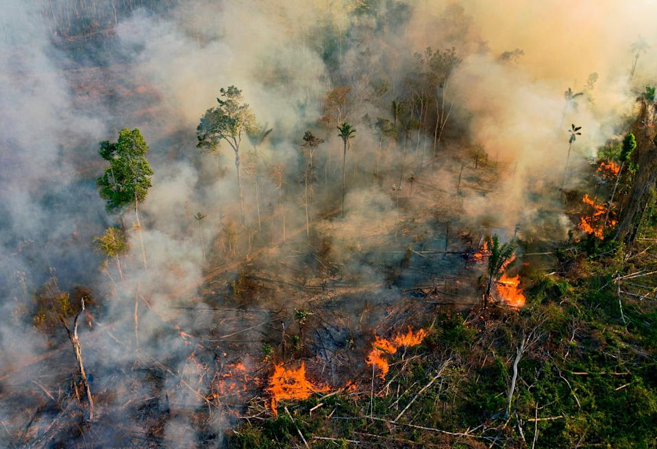Researchers and environmental campaigners have warned that the Amazon is in danger of suffering unprecedented harm under the leadership of Jair Bolsanaro (AFP via Getty)