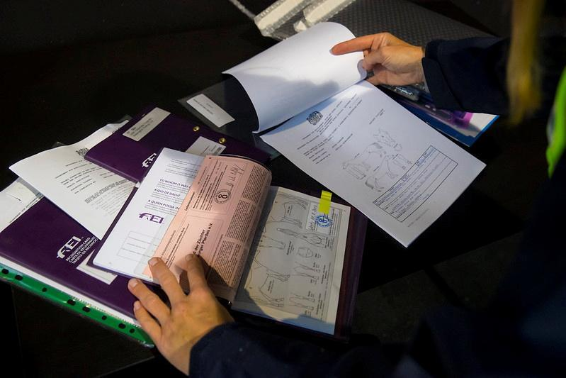 Horse passports are seen checked before a departure for Tokyo 2020 Olympic Games at Liege Airport