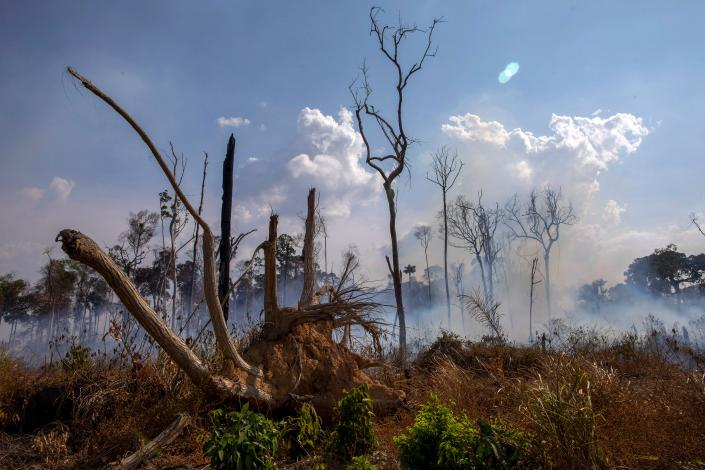 View of a burnt area after a fire in the Amazon rainforest near Novo Progresso, Para state, Brazil, on Aug. 25, 2019. (Photo: Joao Laet/AFP/Getty Images)