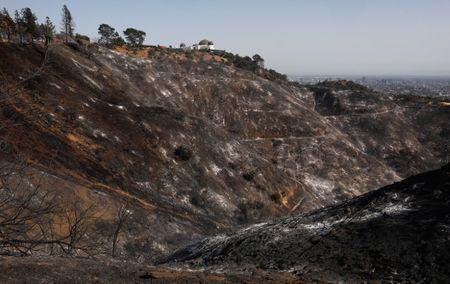 A scorched hillside is shown after a fire near the landmark Griffith Observatory in the hills overlooking Los Angeles, California, U.S. July 10, 2018. REUTERS/Patrick T. Fallon