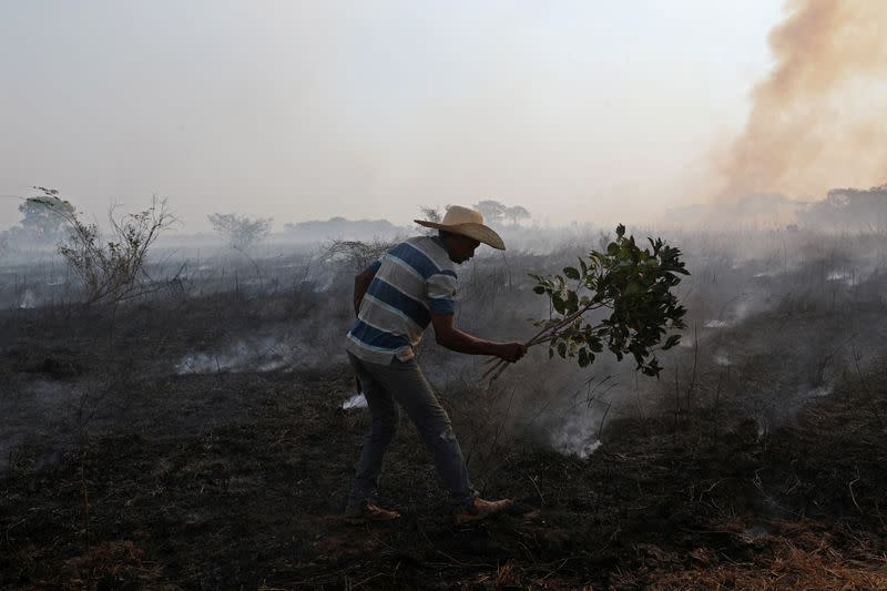 FILE PHOTO: In Brazil, it's not just the Amazon that's burning. The world's largest wetland is on fire too