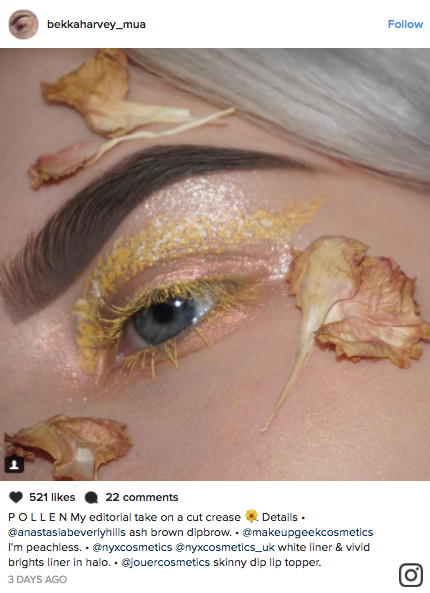 Makeup artists have been gluing fresh and dried flower to their faces for the latest floral eye makeup trend blowing up Instagram.