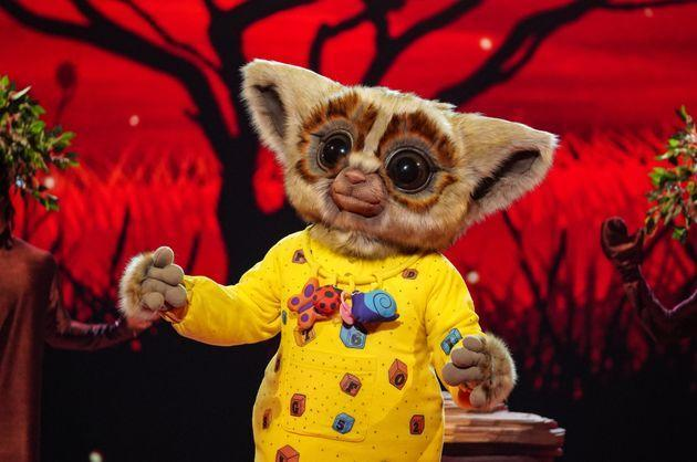 Bush Baby performing in Saturday night's show.