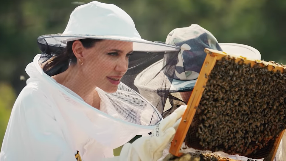 Angelina Jolie shares support for initiative teaching beekeeping (Vogue)
