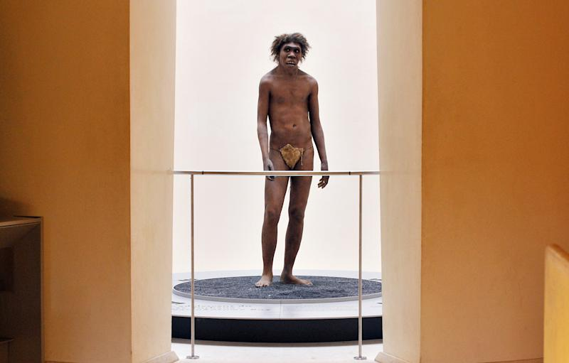 Photo of a Neanderthal exhibit at the National Prehistoric Museum of Eyzies-de-Tayac, Dordogne, France, July 2008 (AFP Photo/Pierre Andrieu)
