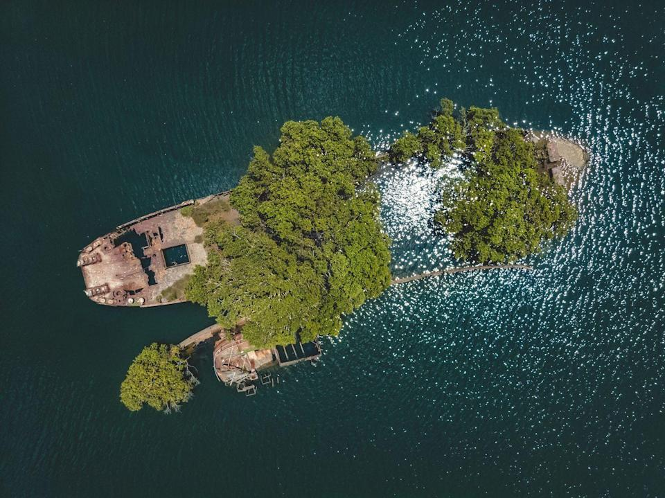 <p>Trees grow atop this sunken vessel, which rests not far off the coast of Homebush, Australia.</p>