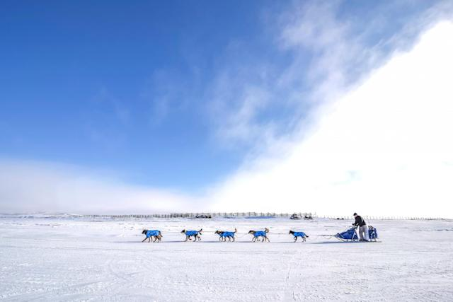 <p>Veteran musher Scott Smith and his race team travel along the frozen Kouwegok River out of Unalakleet, Alaska, toward the Shaktoolik checkpoint Monday, March 13, 2017. Mushers and their race teams competing in Iditarod XLV are now past the halfway point of the race and heading into the final push on the trek to Nome. (Mike Kenney/Iditarod Trail Committee via AP) </p>