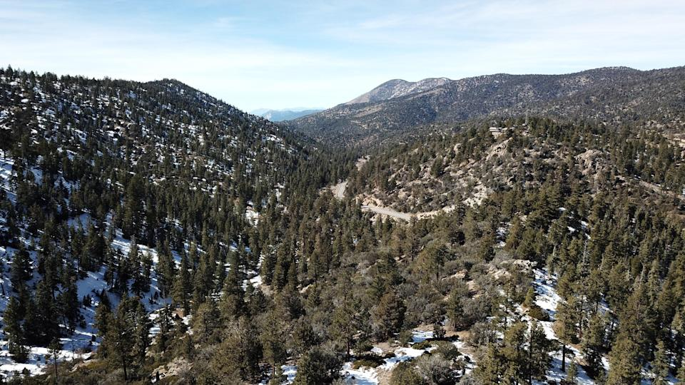 <p><strong>What's the big picture here?</strong><br> If you're an outdoor adventurer at heart, this tour is for you. You can choose from zip lining or tree climbing, giving you a unique view of the San Bernardino Mountains and it's stunning pines. During the wintertime, they also offer snowshoeing treks, a real treat for every level of outdoors person.</p> <p><strong>Tell us about your fellow tourees.</strong><br> We were lucky enough to have the whole biplane course to ourselves. With just two of us, we were free to swing form tree to tree and screech at the top of our lungs, with our voices echoing in the forest below.</p> <p><strong>How are the guides, then?</strong><br> Guides were outdoorsmen that loved sharing this kind of adventure with people.</p> <p><strong>Anything you'll be remembering weeks or months or years from now?</strong><br> The retired war vehicles that take you up to the top of the zipline course make you feel even more badass for choosing to fly above the tree line.</p> <p><strong>So: Who is this best for?</strong><br> This is a great way to dip your toe into zip lining. You're not so high above the canopy that you can't see the ground, making it ideal for first timers.</p>