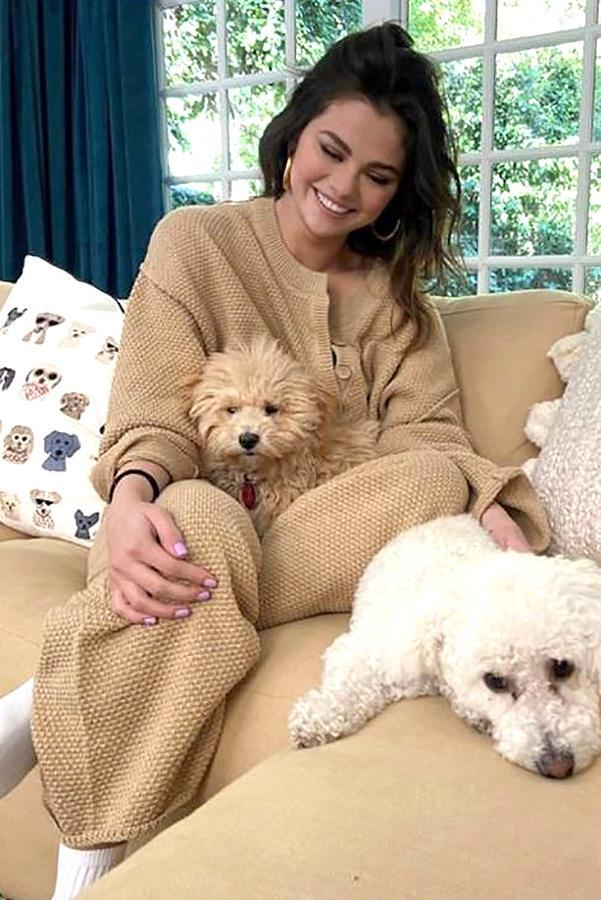 """<p>While hunkering down at home during the coronavirus pandemic, the singer decided to <a href=""""https://people.com/pets/selena-gomez-foster-puppy-social-distancing-coronavirus/"""" rel=""""nofollow noopener"""" target=""""_blank"""" data-ylk=""""slk:foster a puppy named Daisy"""" class=""""link rapid-noclick-resp"""">foster a puppy named Daisy</a>.</p> <p>""""Winnie and Daisy are getting along very well,"""" Gomez said during an Instagram Live in March, referring to her other dog and her new foster companion.</p> <p>""""I know a few friends that are fostering right now just to give animals a safe place … I couldn't help it, I have to keep her,"""" she added.</p>"""