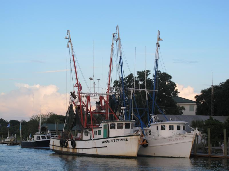 Shrimp boats sit at dock in Mount Pleasant, S.C., in this August 18, 2013 photograph. Lawmakers in both state legislatures and in Washington, D.C., have been considering bills that would help to ensure more accurate labeling of seafood. (AP Photo/Bruce Smith)