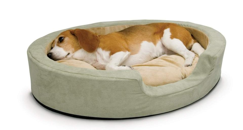 The handy product is perfect for pooches with arthritis and other health problems [Image: Amazon]
