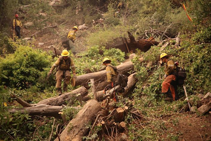 Firefighters construct a line to battle the Bobcat Fire.