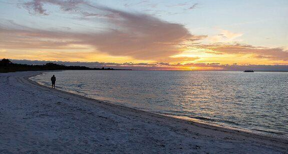 The idyllic Fort Myers Beach in Big Carlos Pass, Florida where the dolphin was found. Source: Getty stock