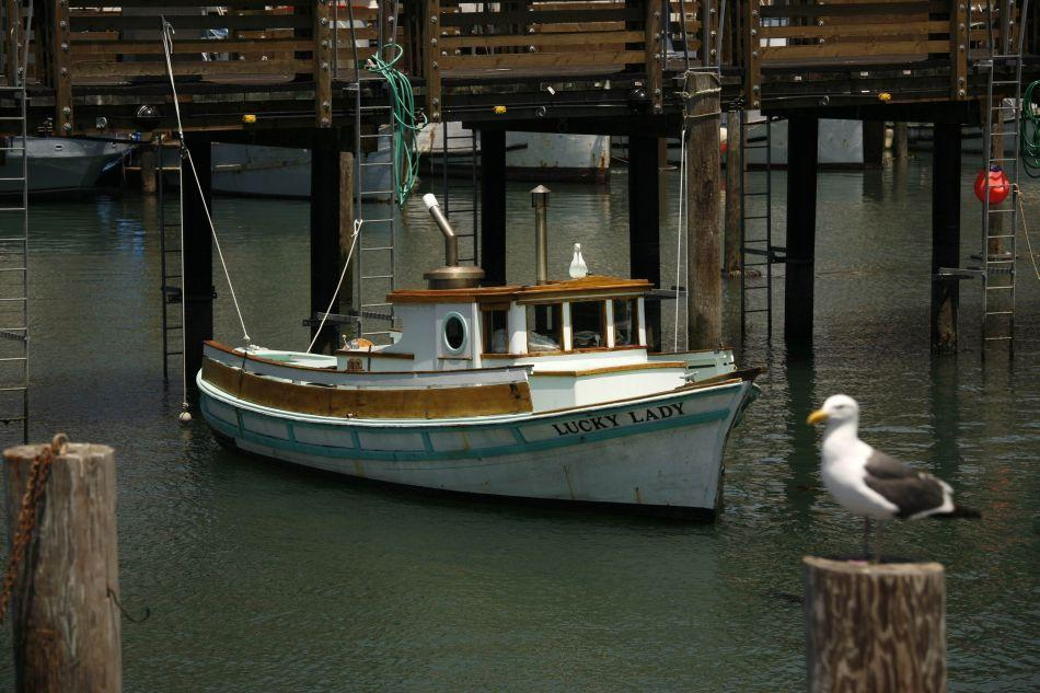 A fishing boat sits at dock at Fisherman's Wharf in San Francisco, California. With its striking cityscapes and an eclectic offering of food, arts and culture, San Francisco captivates travelers and residents alike.