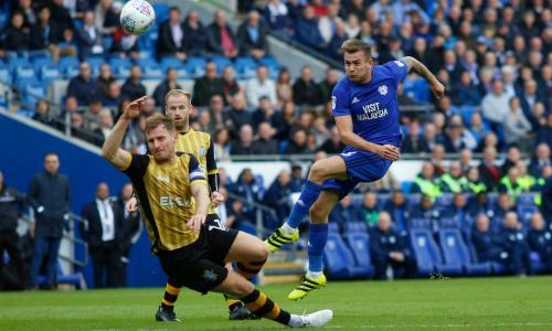 Joe Ralls grabs winner as Cardiff City pile on the misery for Sunderland