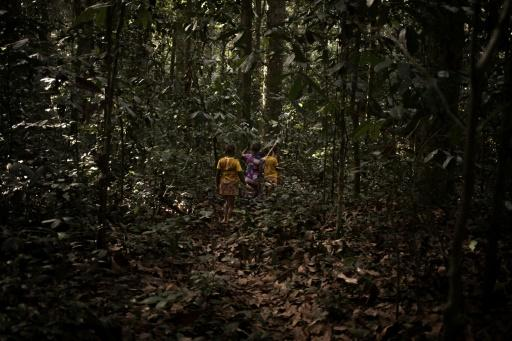 A group of young Bayaka Pygmies go deep into the forest to stay at a hunting camp