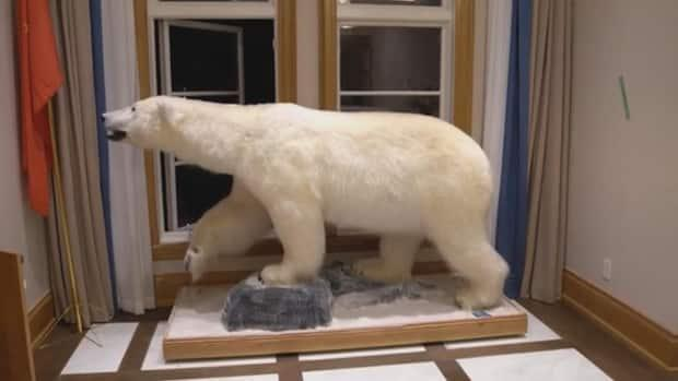 Inside the home, police found what appears to be a stuffed polar bear.