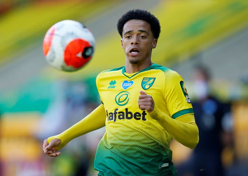 Newcastle sign left back Lewis from Norwich