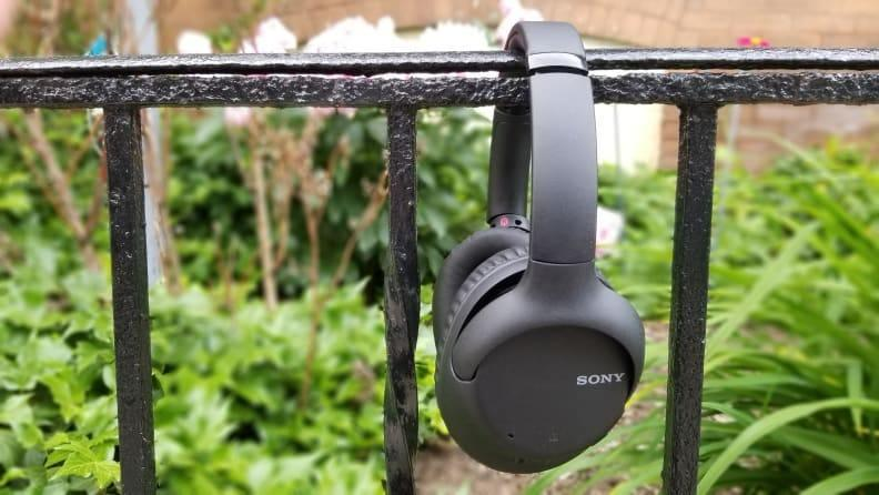 These headphones offer plenty for their budget-friendly price.