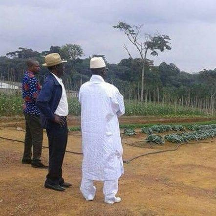Mr Jammeh and Mr Obiang are seen inspecting a plot of land