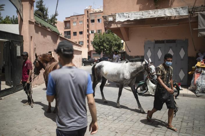 Animal owners gather outside the SPANA shelter to have them inspected, in Marrakech, Morocco, Wednesday, July 22, 2020. Morocco's restrictions to counter the coronavirus pandemic have taken a toll on the carriage horses in the tourist mecca of Marrakech. Some owners struggle to feed them, and an animal protection group says hundreds of Morocco's horses and donkeys face starvation amid the collapsing tourism industry. (AP Photo/Mosa'ab Elshamy)