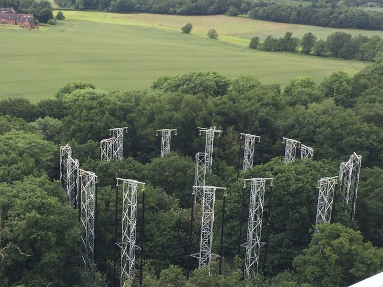 An aerial view of a patch of forest encircled by metal towers.