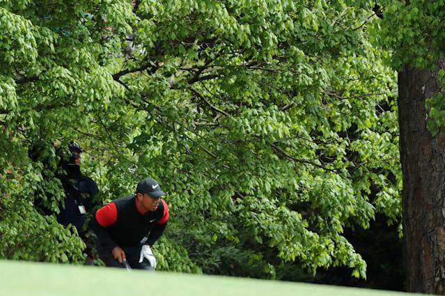 Tiger Woods of the U.S. looks out from under a tree before hitting on the second fairway during final round play of the 2018 Masters golf tournament at the Augusta National Golf Club in Augusta, Georgia, U.S. April 8, 2018. REUTERS/Lucy Nicholson