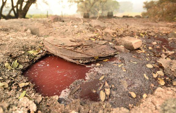 A pool of wine boils beneath debris from the fire at Paradise Ridge Winery.