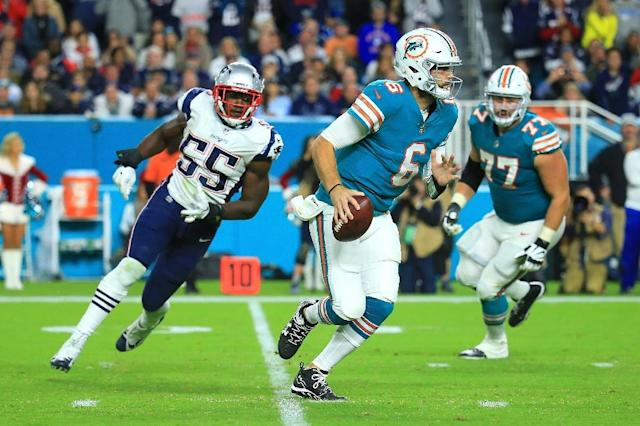 Jay Cutler, tempted out of an early retirement at the start of the season, threw for 263 yards and three touchdowns as the Miami Dolphins upset the New England Patriots 27-20 (AFP Photo/CHRIS TROTMAN)