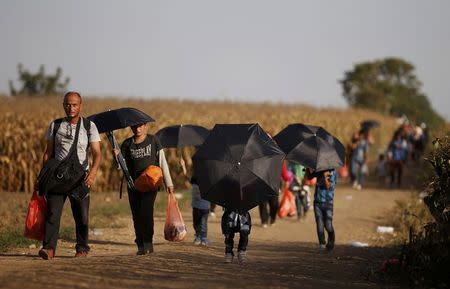 Migrants walk on a dirt road as they approach the Croatian border near the town of Sid, Serbia, September 18, 2015.  REUTERS/Stoyan Nenov
