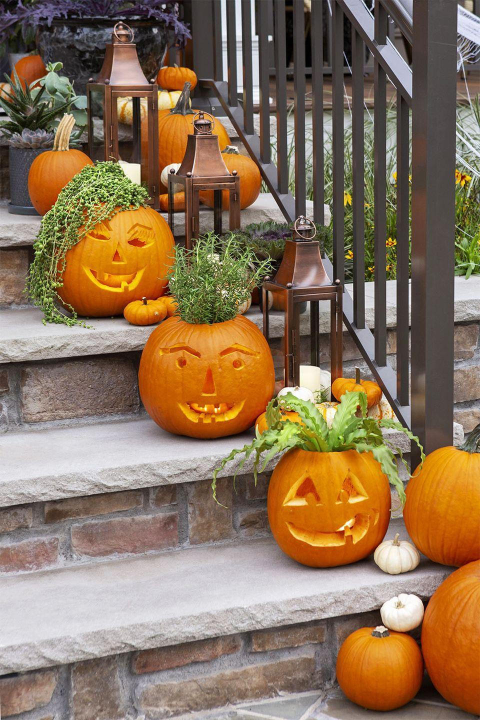 <p>Scoop out pumpkins and carve faces, then pot them when hearty green plants and herbs.</p>
