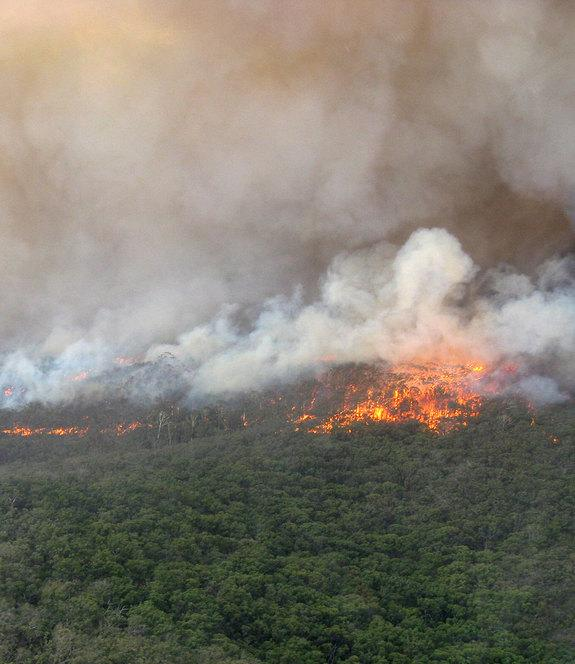 Why Australia's Wildfires Are So Bad