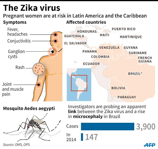 Factfile on the Zika virus after an outbreak in parts of South America. Pregnant women are being advised to avoid certain countries. (AFP Photo/)
