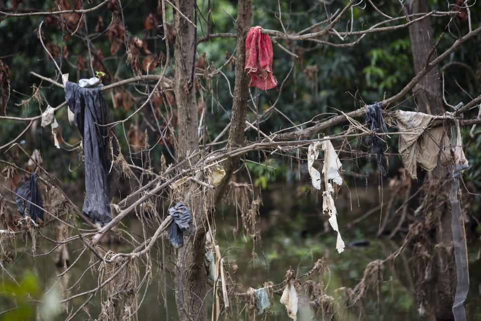 Pieces of clothing hang from a tree in the Chamelecon River after the water brought by hurricanes Eta and Iota receded little by little in the Saviñon Cruz neighborhood oof San Pedro Sula, Honduras, Tuesday, Jan. 12, 2021. The assembly plants that surround San Pedro Sula and power its economy are still not back to pre-hurricane capacity amid the pandemic. (AP Photo/Moises Castillo)