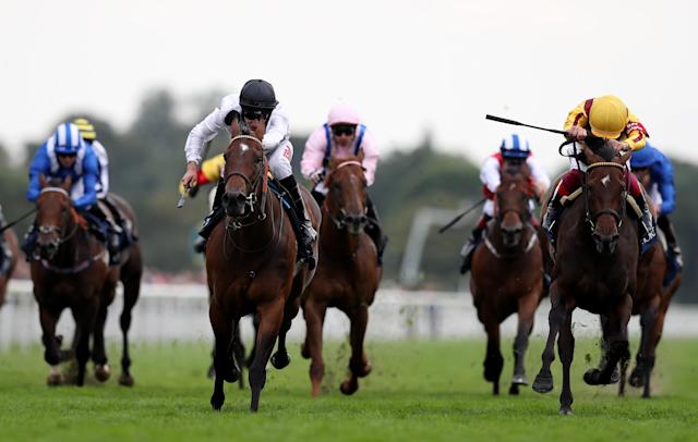 Marsha ridden by Luke Morris (second left) narrowly won the Coolmore Nunthorpe Stakes last season, with Battaash (left) only finishing fourth