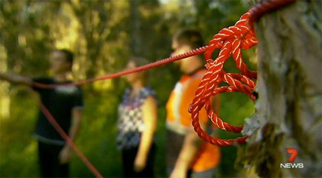 A number of traps have been found around the Brisbane area. Source: 7 News