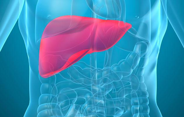 Most liver problems are reversible if discovered early. (Thinkstock photo)