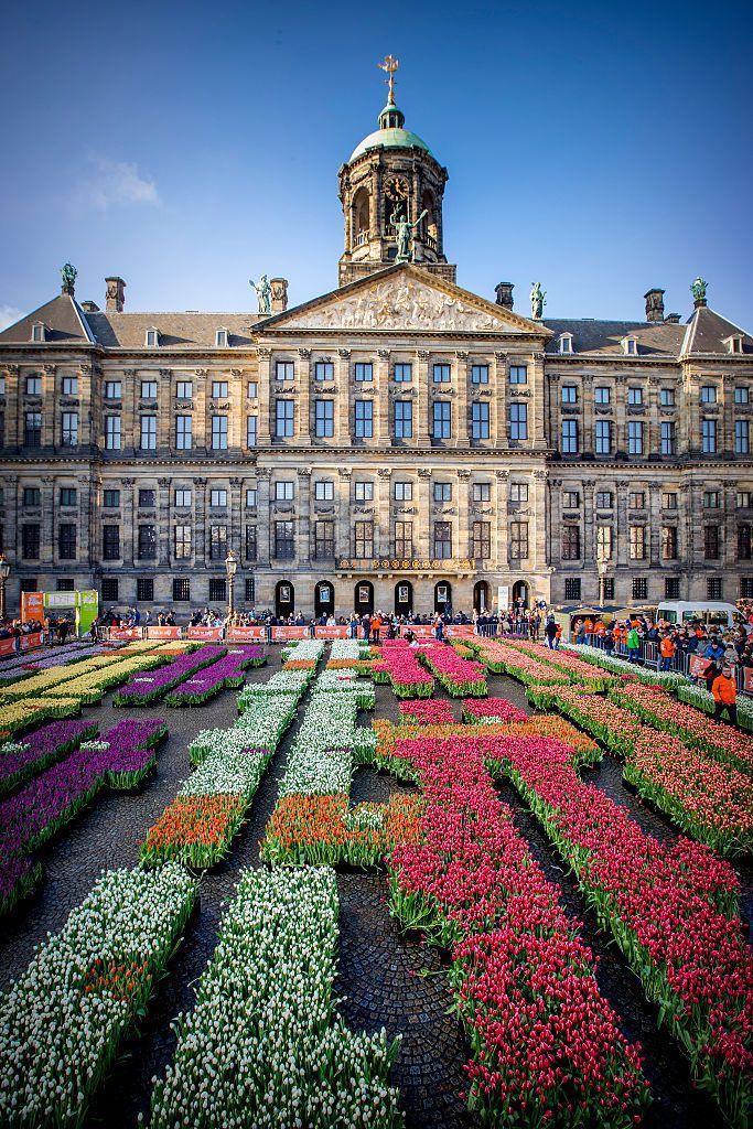 <p>Bunches of tulips displayed in rows for National Tulip Day</p>