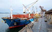 FILE PHOTO: Bulk Carrier 'Discoverer' unloads U.S. soybeans at the port of Paranagua