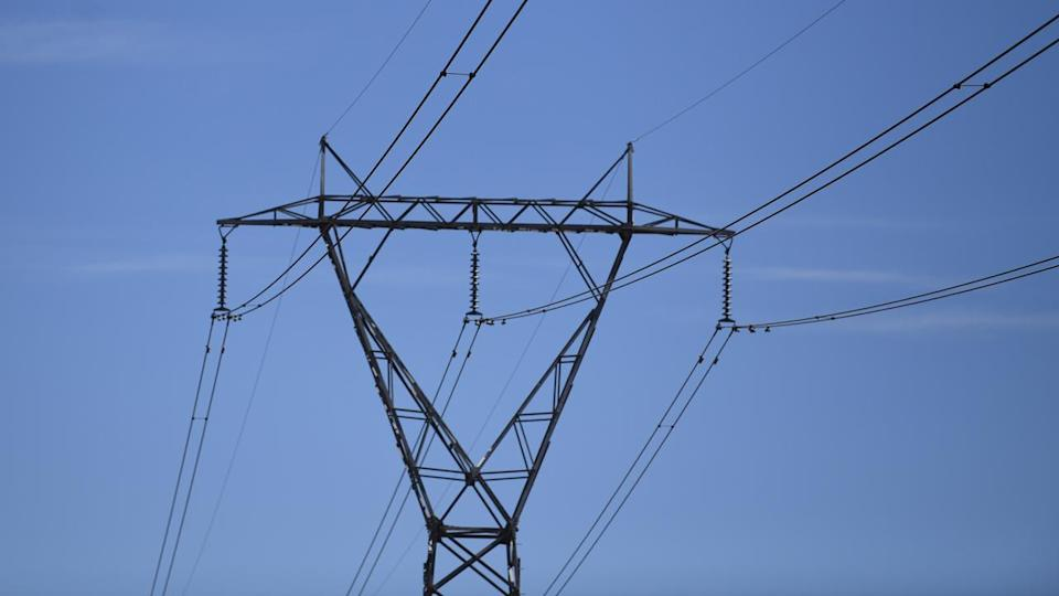 Watchdog to review electricity market: PM