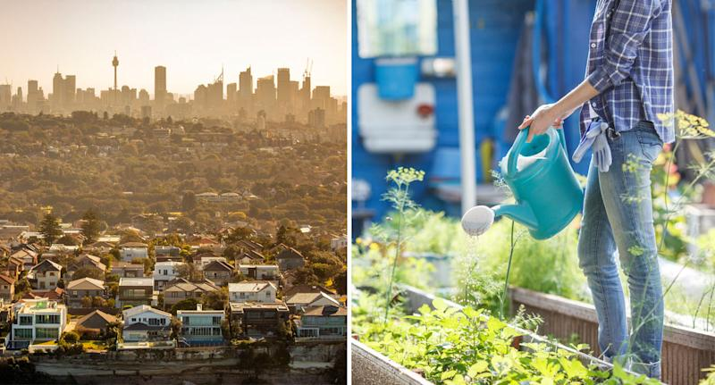 Pictured is Sydney's skyline from the Eastern Suburbs (left) and a woman with a watering can watering plants (right).