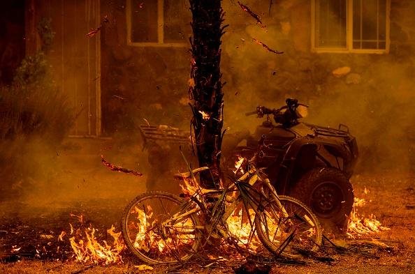 A bicycle and palm tree burn at a residence during the LNU Lightning Complex fire in the Spanish Flat area of Napa, California.