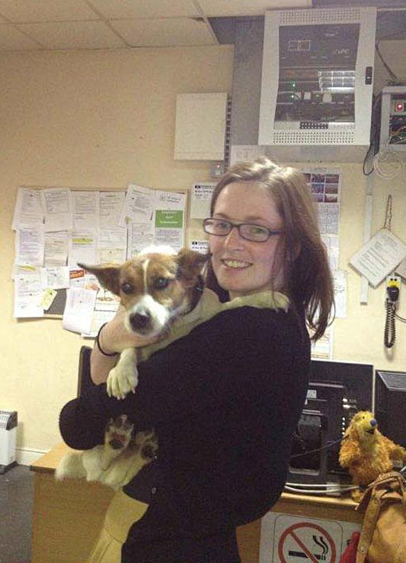 Twitter helps find dog that took train to Dublin