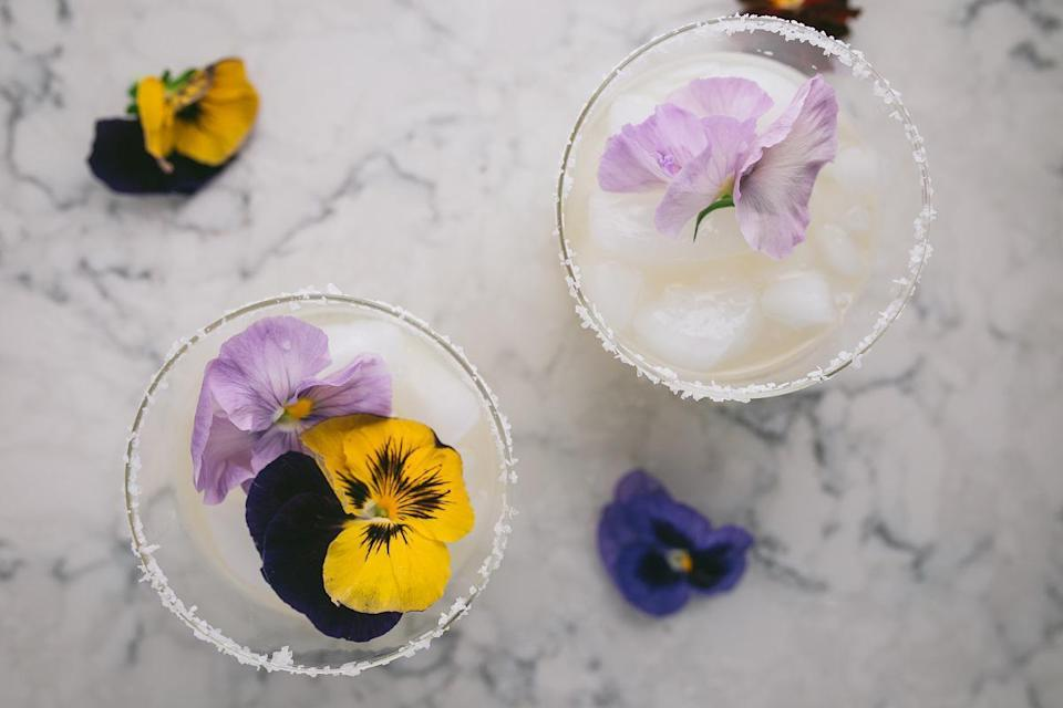"""<p>What list of Mexican recipes would be complete without a margarita? And this one is a twist on the classic using lemons instead of lime. </p> <p><strong><a href=""""https://www.thedailymeal.com/best-recipes/meyer-lemon-margaritas?referrer=yahoo&category=beauty_food&include_utm=1&utm_medium=referral&utm_source=yahoo&utm_campaign=feed"""" rel=""""nofollow noopener"""" target=""""_blank"""" data-ylk=""""slk:For the Meyer Lemon Margarita recipe, click here"""" class=""""link rapid-noclick-resp"""">For the Meyer Lemon Margarita recipe, click here</a>. </strong></p>"""