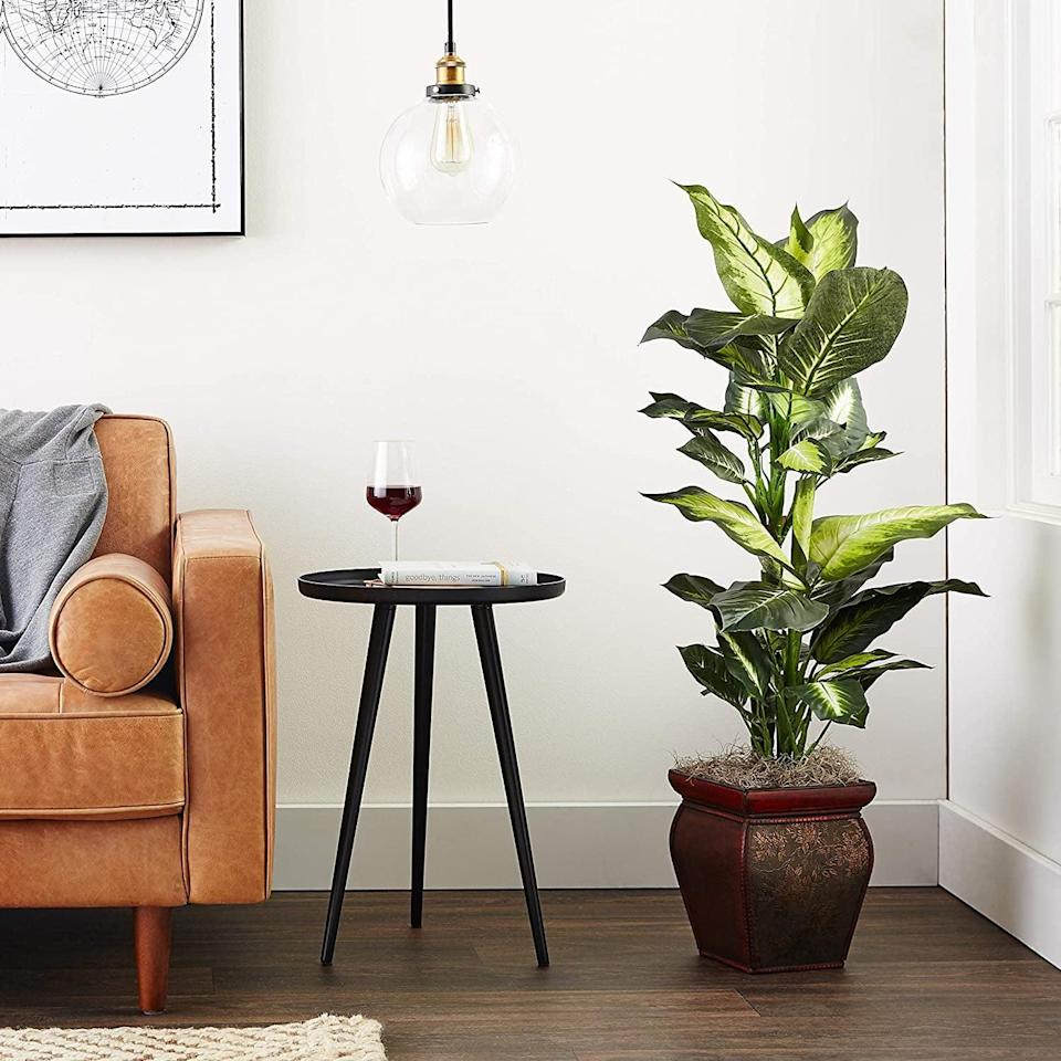 <p>For a big impact, try this <span>Golden Dieffenbachia</span> ($62), which comes with a decorative planter. The plant makes a statement measuring almost four feet tall and 20 inches wide.</p>