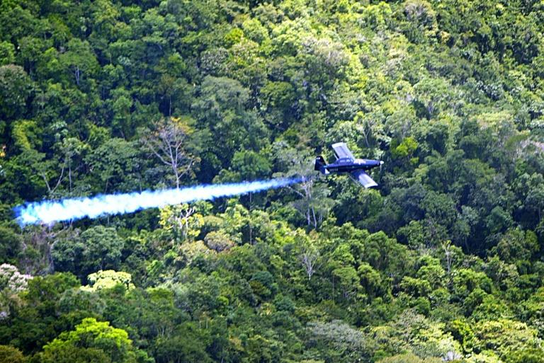 Colombia close to resuming aerial spraying of coca crops