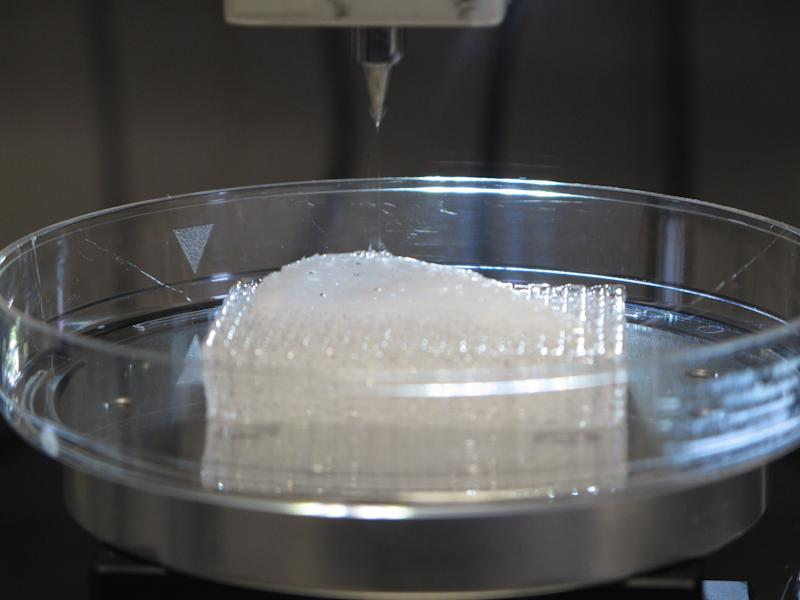 "The ""scaffolding"" for a human ear emerges inside a 3-D printer in a laboratory at Wake Forest University in Winston-Salem, N.C., on Wednesday, May 8, 2013. The university is experimenting with various ways to create replacement organs for human implantation, from altering animal parts to building them from scratch with a patient's own cells. (AP Photo/Allen Breed)"