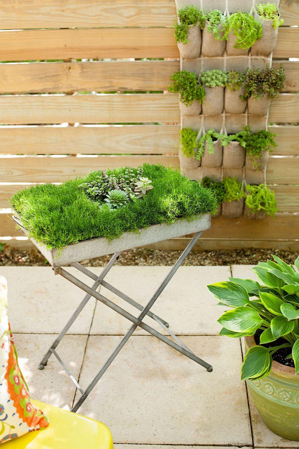 """<p> <a href=""""https://www.goodhousekeeping.com/home/gardening/advice/g1007/backyard-decorating/"""" rel=""""nofollow noopener"""" target=""""_blank"""" data-ylk=""""slk:This metal table"""" class=""""link rapid-noclick-resp"""">This metal table</a>, originally intended for serving drinks, now overflows with Irish moss and succulents on a patio.</p>"""