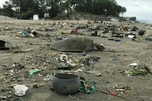 At least 20 dead sea turtles were found among piles of plastic waste washed along the Bay of Bengal beach near Cox's Bazar