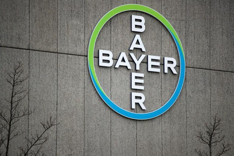 Bayer has been plagued by problems since it bought Monsanto, which owns Roundup, in 2018 for $63 billion, and inherited its legal woes. (AFP/Odd ANDERSEN)